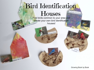 bird books, bird houses for kids