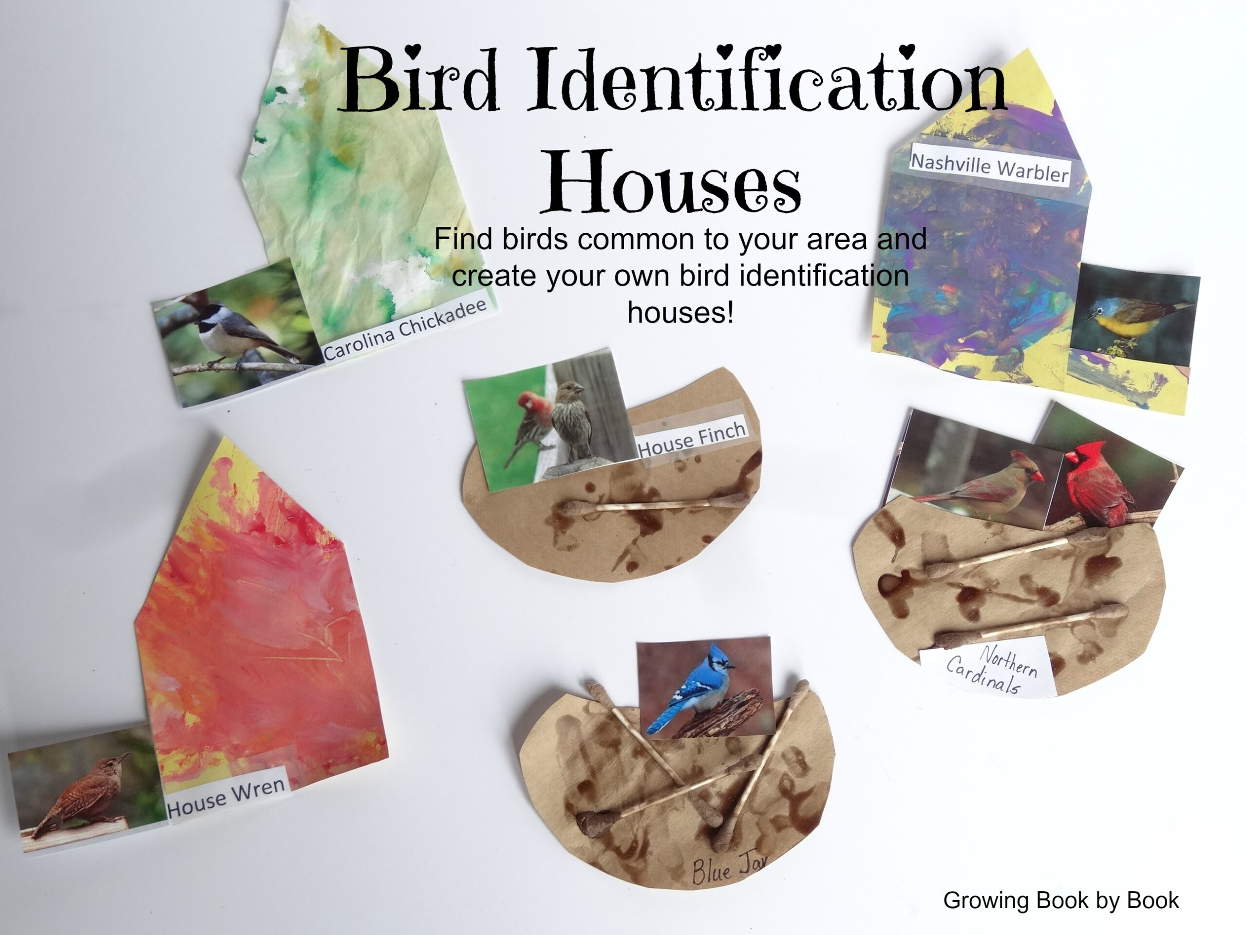 Bird identification houses build your own houses to help for Help build your own home