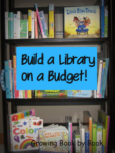 Ideas for creating a library with a limited budget.