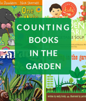 counting in the garden with children