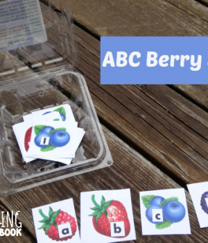 ABC Berry Sort to compliment Jamberry by Degen from growingbookbybook.com