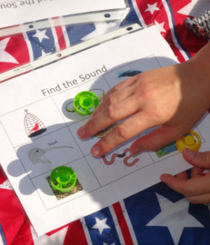 Practice beginning sounds with this bird themed bingo game from growingbookbybook.com