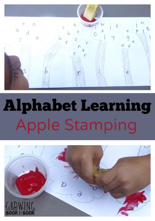 Learn the alphabet with this fun apple stamping activity.  Perfect for practicing letter recognition or the letters in your name from growingbookbybook.com #PlayfulPreschool