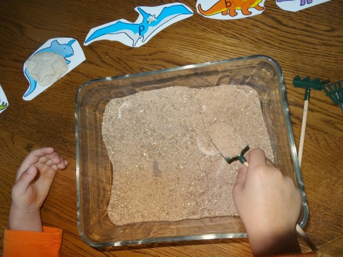 digging for fossils dinosaur activity