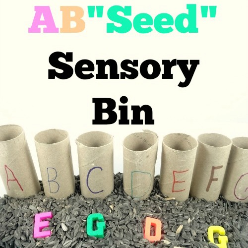 ABSeed Sensory Bin