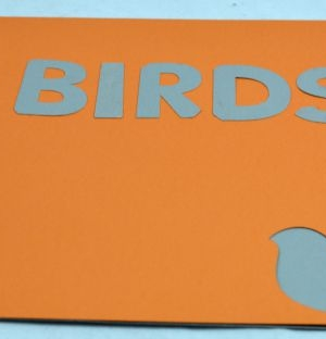 making a book about birds