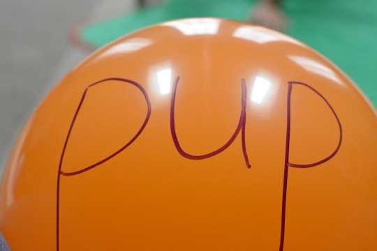"Writing ""up"" words on balloons to decode."