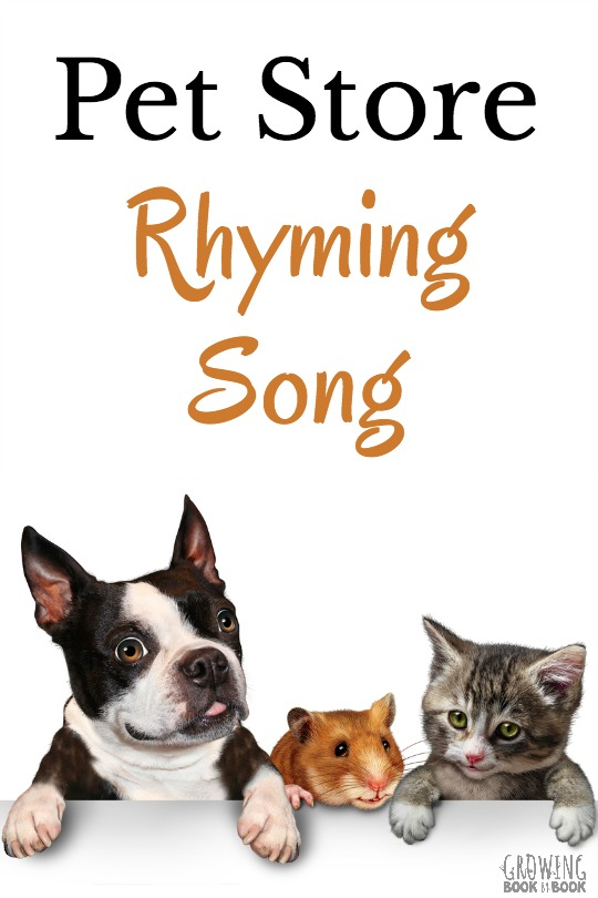 songs about pets for preschoolers pet rhyming song 156