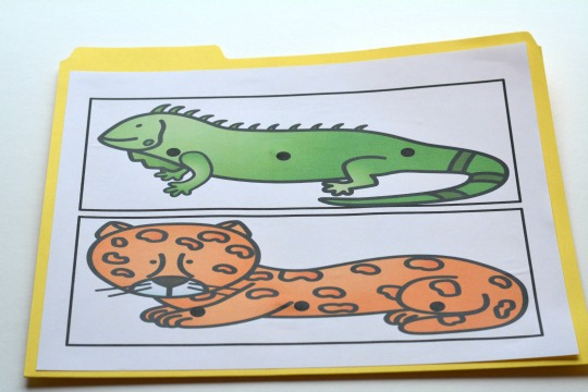 print out your free rainforest animals for a phonemic awareness activity