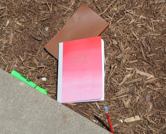journaling in the garden