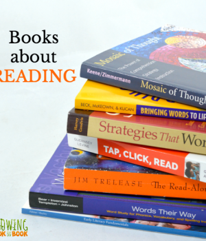 The best of the best books about teaching reading for teachers, parents and homeschoolers.