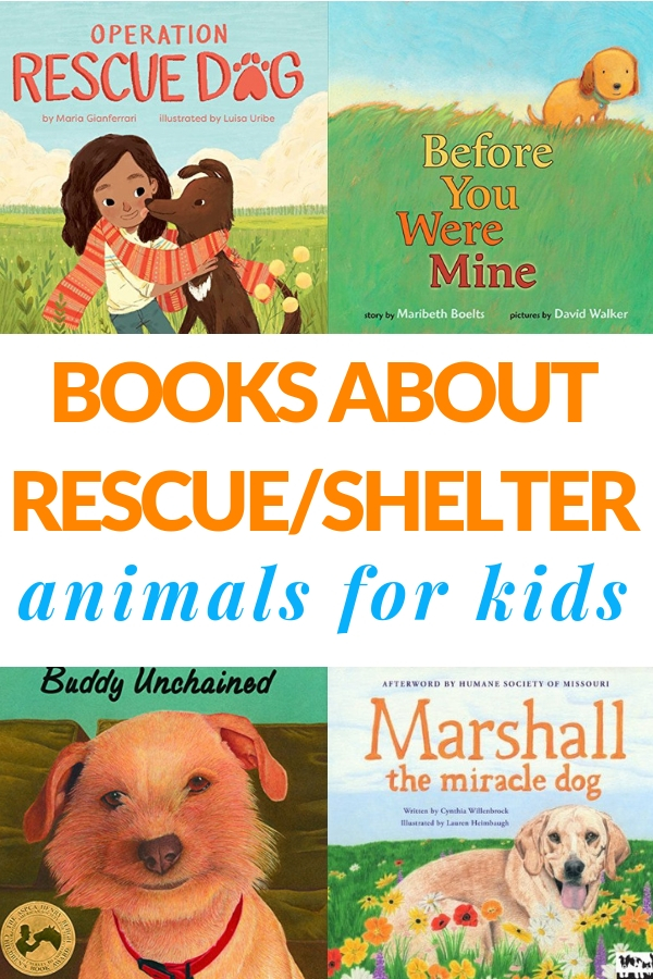 books all about shelter animals