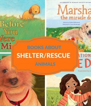 shelter animal stories for kids