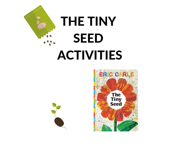 THE TINY SEED ACTIVITIES