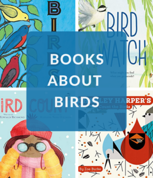bird books for preschoolers, toddlers, and beginning readers