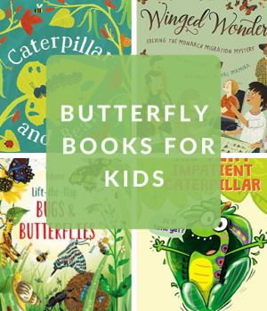 children's books about butterflies