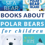 books about polar bears