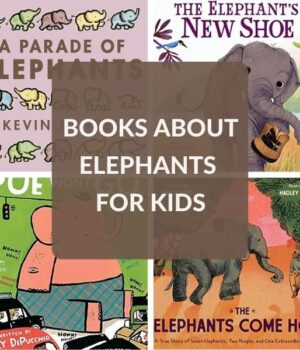 picture books about elephants