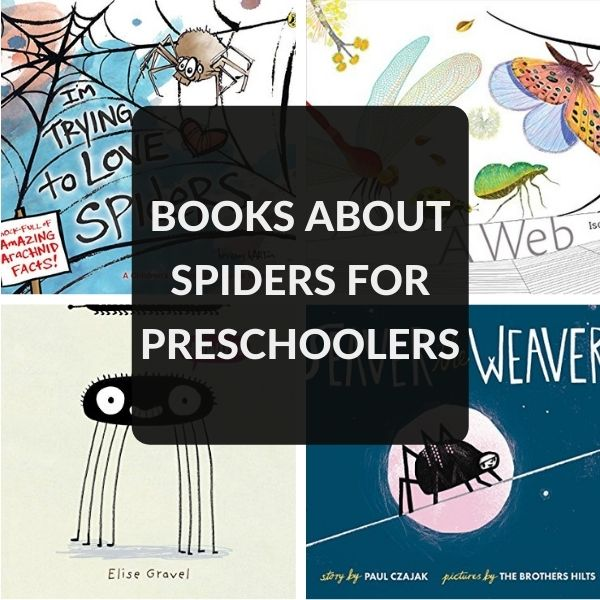 PRESCHOOL BOOKS ABOUT SPIDERS